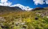 Mountain valley in summer — Stock fotografie
