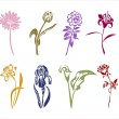Eight silhouettes of flowers — Stock Vector #56633293