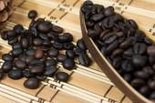 Grain de café — Photo