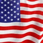 American Fla — Stock Photo #54586449