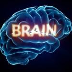 ������, ������: Brain Xray Brain