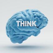 Think Brain — Stock Photo