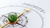 Pakistan Profit Concep — 图库照片
