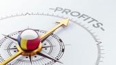 Romania Profit Concep — 图库照片