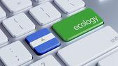 ニカラグアの生態学の概念 — ストック写真