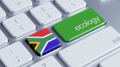 South Africa Ecology Concept — Stock Photo