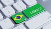 Brazil Holidays Concept — Fotografia Stock