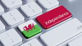 ウェールズの独立の概念 — ストック写真