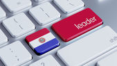 Paraguay Leader Concept — Stockfoto