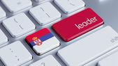Serbia Leader Concept — Stockfoto