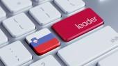 Slovenia Leader Concept — Stockfoto