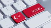 Turkey Money Concept — Stock Photo