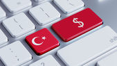 Turkey Money Concept — Foto de Stock