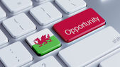 Wales Opportunity Concep — Stock Photo