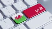 Wales Profit Concep — Stock Photo