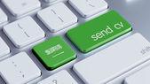 Saudi Arabia  Send CV Concept — Foto Stock