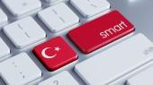 Turkey Smart Concept — Foto Stock