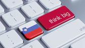 Slovenia Think Big Concept — Stock Photo