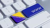 Bosnia and Herzegovin www Concept — Stock Photo