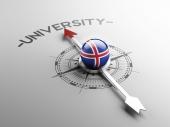 冰岛大学的理念 — 图库照片