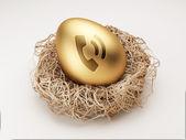 Egg Contact Icon — Stock Photo