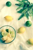 Lemons and limes with fir branch on the white background — Stock Photo