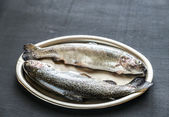 Fresh trouts on the vintage metal tray — Stock Photo