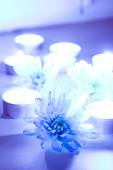Blue flower and tea candles — Stock Photo