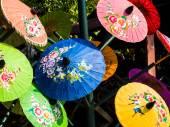 Colorful rice paper umbrella dried in nature. — Stock Photo
