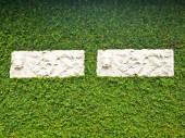 Couple de floral stuc blanc sur plante liane verte couvrant mur avec feuilles — Photo