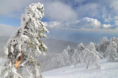 Snow-capped peaks of Mount Ai -Petri in Crimea — Stock Photo