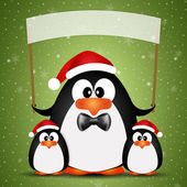 Penguin with Santa's hat for Christmas — Stock Photo