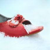 Siingle Shoe — Stock Photo