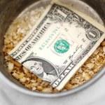 Bread Crumbs and Dollar Bill — Stock Photo #63553167