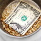 Bread Crumbs and Dollar Bill — Stock Photo