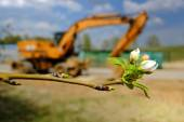 Buds And Excavator — Stock Photo