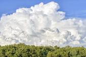 Dynamic cloudy sky — Stock Photo