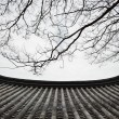 Detail of Korean traditional tiled roof and branches — Stock Photo #58727497