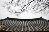 Detail of Korean traditional tiled roof and branches — Stock Photo