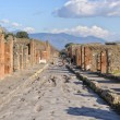 NAPLES, ITALY - JANUARY 19, 2010: Street of pompeii — Stock Photo #68638231