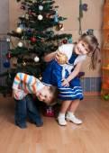 Joyful kids playing in a Christmas tree (3 years and 6 years) — Stock Photo