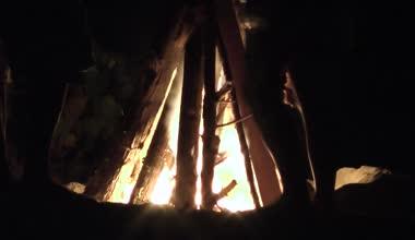 Campfire, Fire, Bonfire — Stock Video