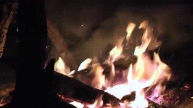 Fire, Flames, Blazes, Heat — Stock Video
