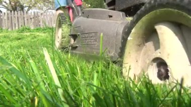 Lawn Mower, Grass Cutter, Landscaping — Stock Video