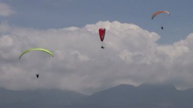 Three Parasails, Triplets, Trio, Paragliding, Sky Diving — Stock Video