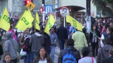 Protesters, Protest, Anti Government — Stock Video