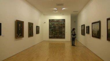 Museum Exhibits, Artwork, Culture — Video Stock