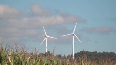 Ветряная мельница, экологически чистая энергия от фермы энергии ветра, электричества — Стоковое видео