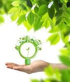 Экология концепции — Стоковое фото