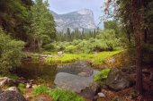 Yosemite National Park landscape — Stock Photo